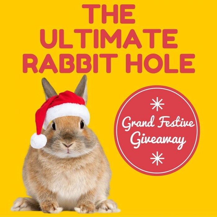 The Ultimate Rabbit Hole Christmas Giveaway