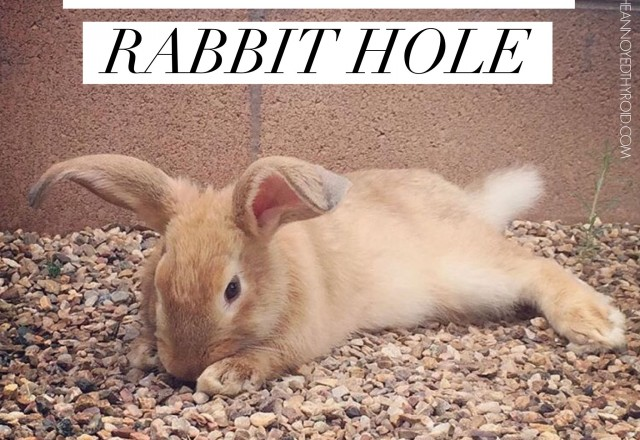 The Ultimate Rabbit Hole #99