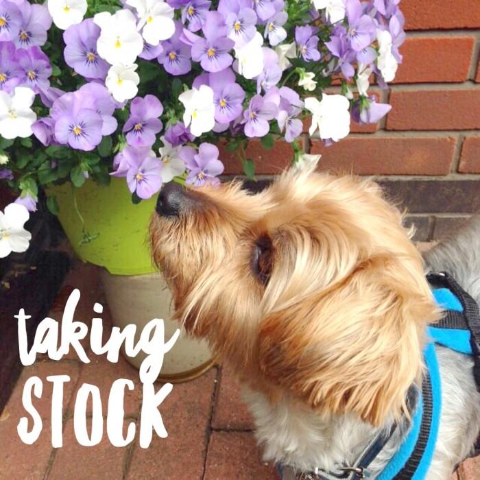 Taking Stock – May
