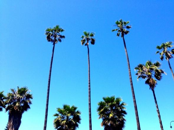 my expat story - sunshine