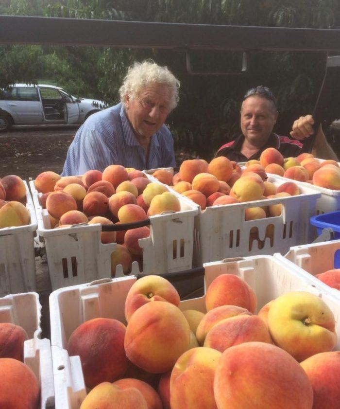 Bakkers Big Peach