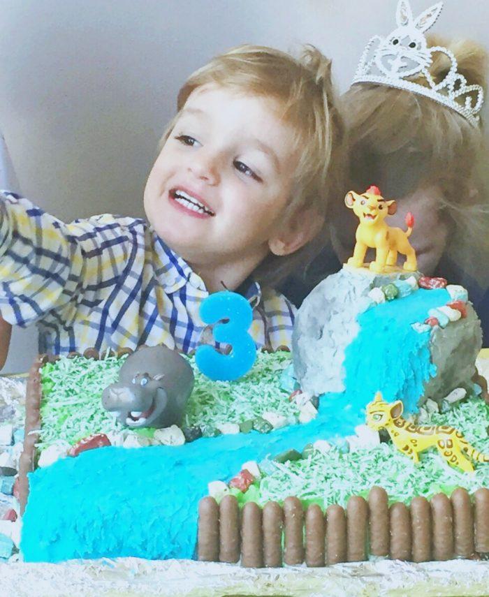 How to make a lion guard cake 10