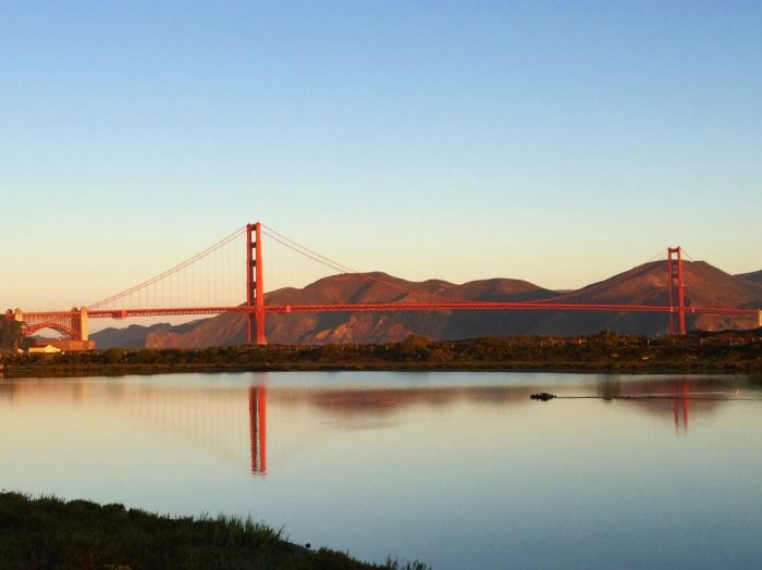 Taking stock - Crissy Field views