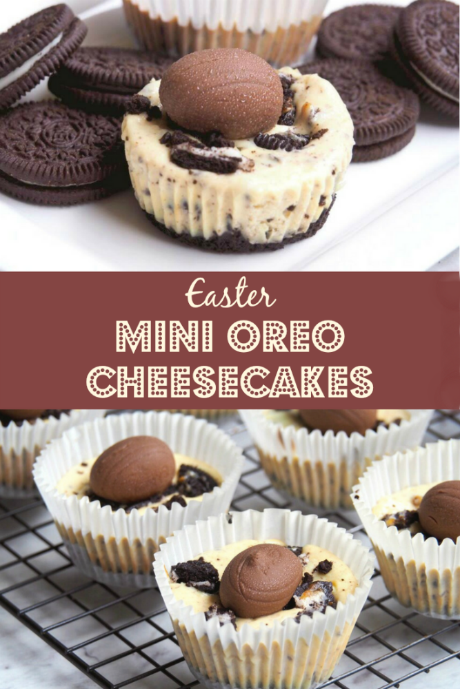 Oreo mini cheesecake