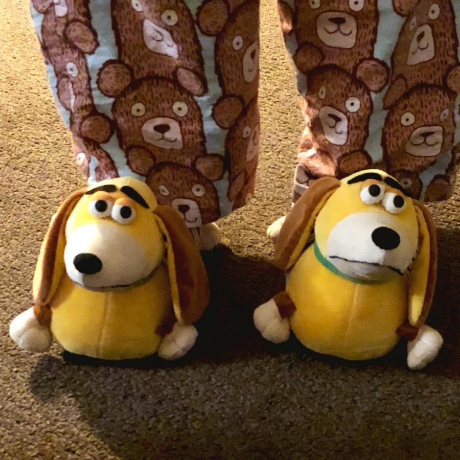 Taking stock - Slinky Dog Slippers