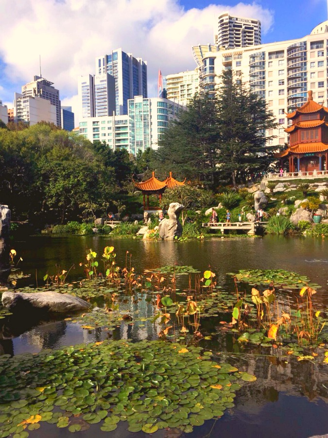 Things to see and do in Sydney - Chinese Garden of Friendship