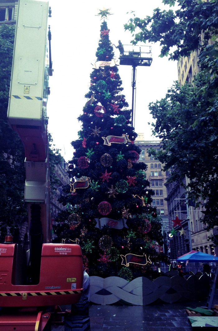 Christmas is coming Sydney!