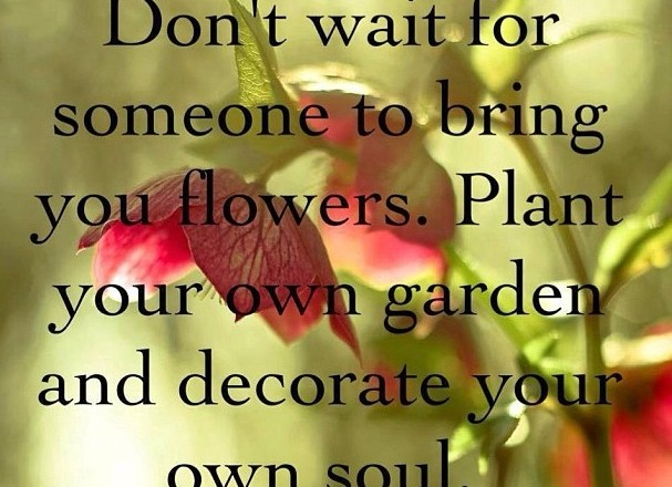 Wednesday Words of Wisdom – Plant Your Own Garden
