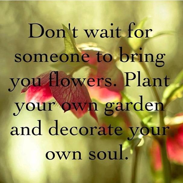 plant-your-own-garden