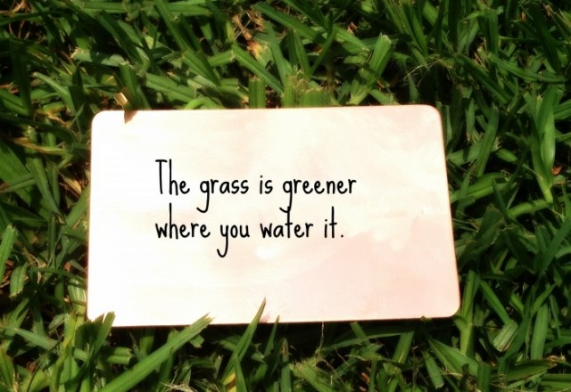 Wednesday Words of Wisdom – The grass is greener