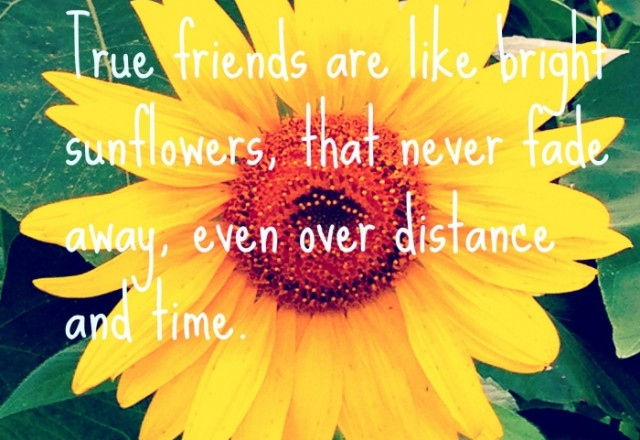 Wednesday Words of Wisdom – Friends are like sunflowers