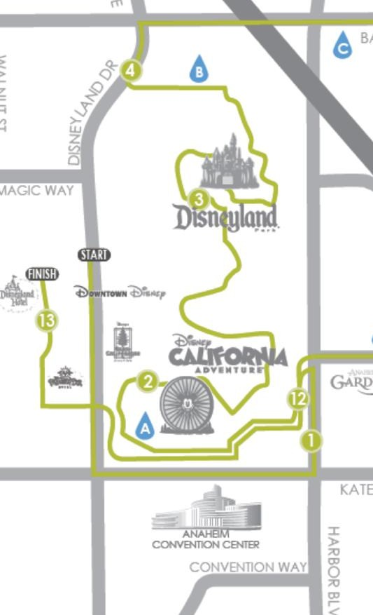 My Disneyland Dream in  Numbers