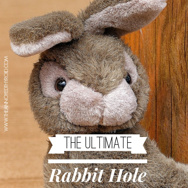 Rabbit Hole 3