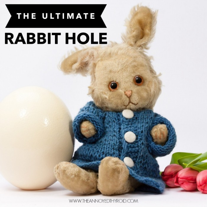 Rabbit Hole 10