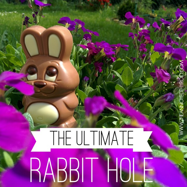 Rabbit Hole 6