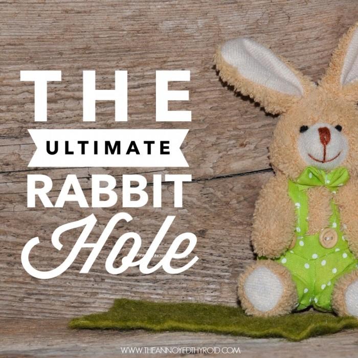 Rabbit Hole 9