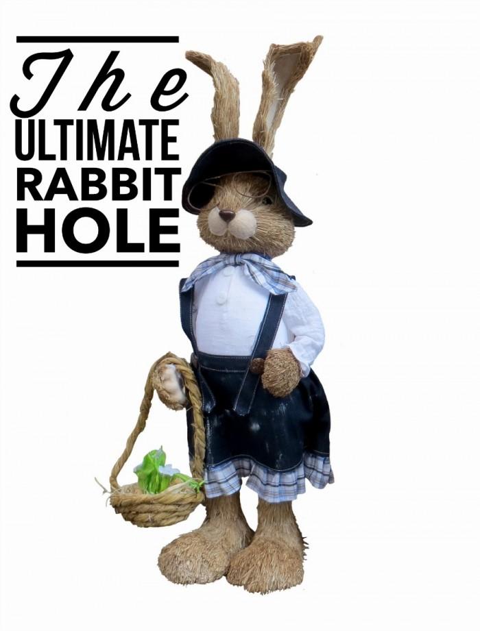 Rabbit Hole 13