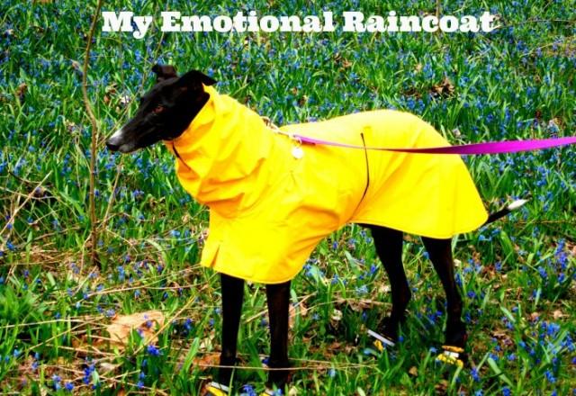My Emotional Raincoat