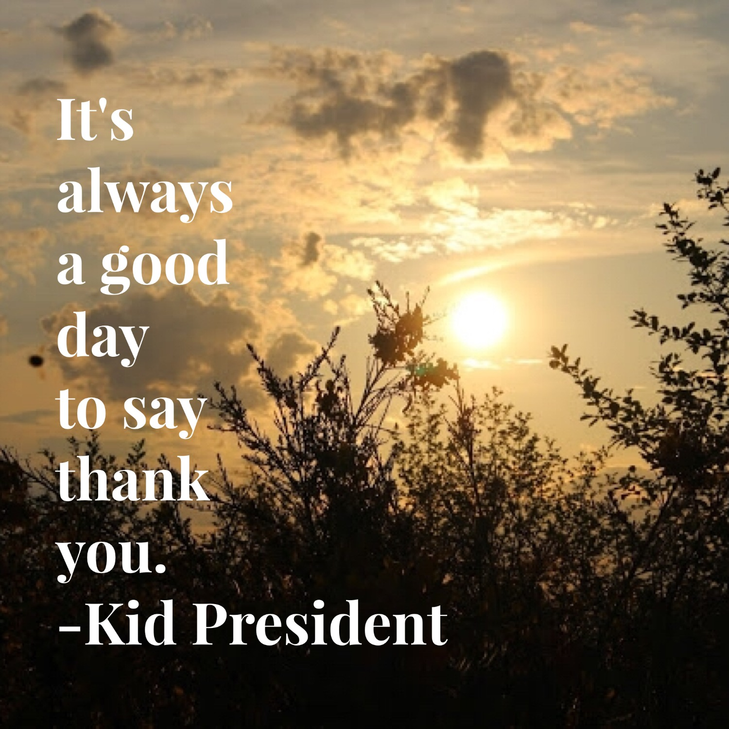 Wednesday Words of Wisdom - A Good Day to Say Thank You ...