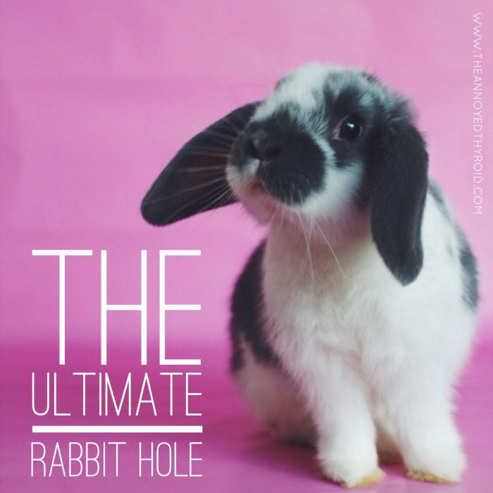 Ultimate Rabbit Hole 25