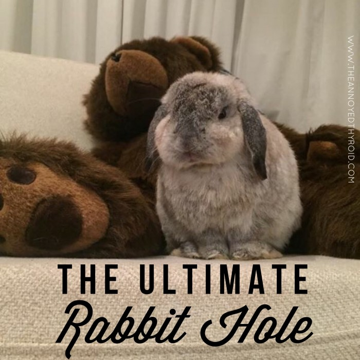 The Ultiamte Rabbit Hole 31