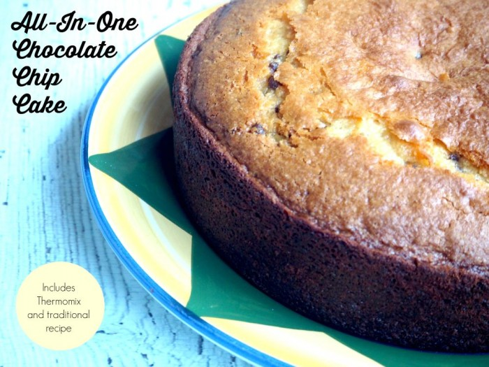 All in One Choc Chip Yoghurt Cake