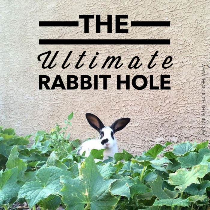 Ultimate Rabbit Hole #35