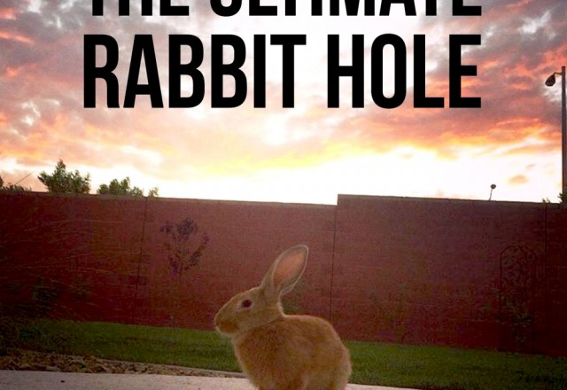 The Ultimate Rabbit Hole #36