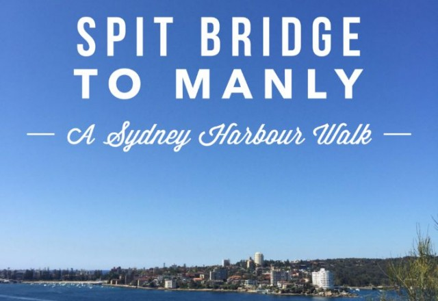 Spit Bridge to Manly – A Harbour Walk