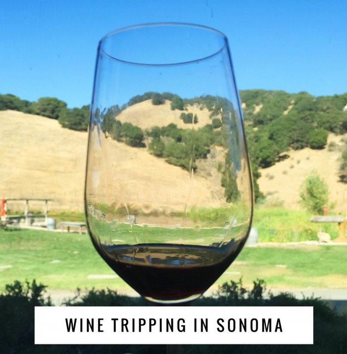 Wine trippping in Sonoma
