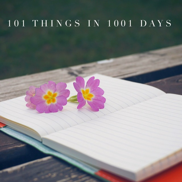 101-things in 1001 days