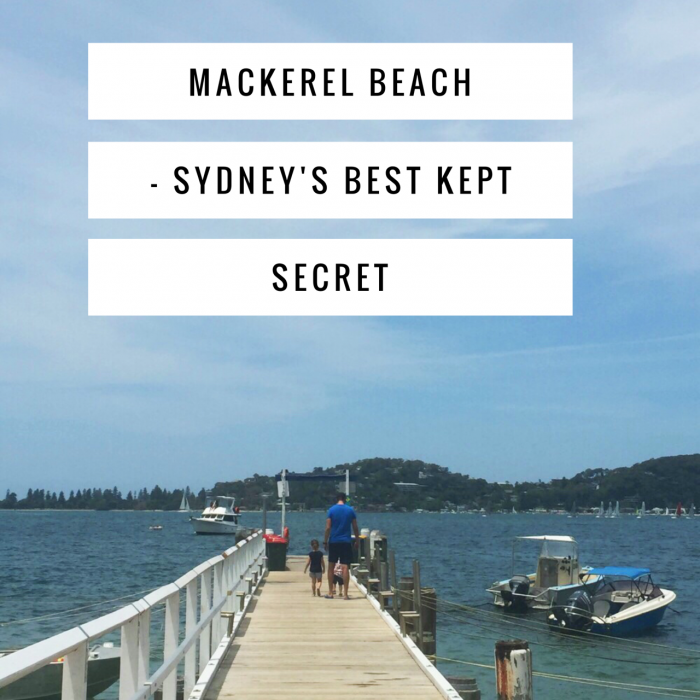 Mackerel Beach Sydney's Best Kept Secret