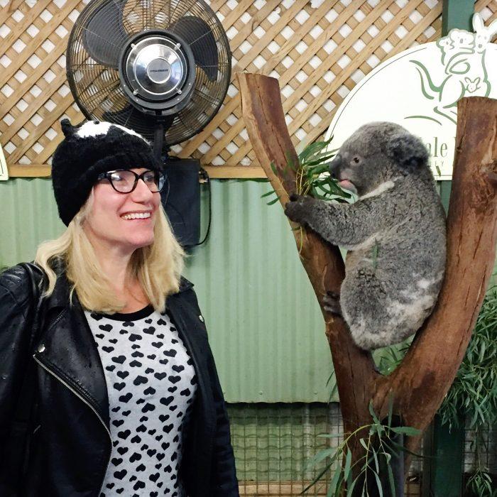 My expat story - koala
