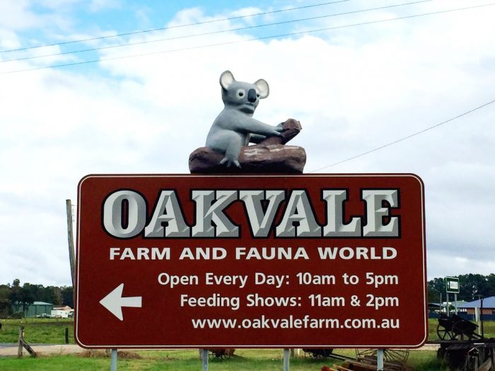 The Big Koala Oakvale Farm