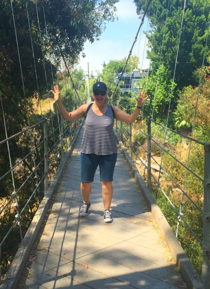 Taking stock - Spruce Street Suspension Bridge