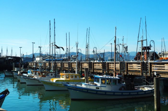SF on Tap - Fisherman's Wharf