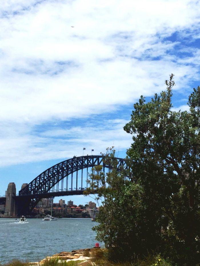 Taking Stock November 2017 - Sydney