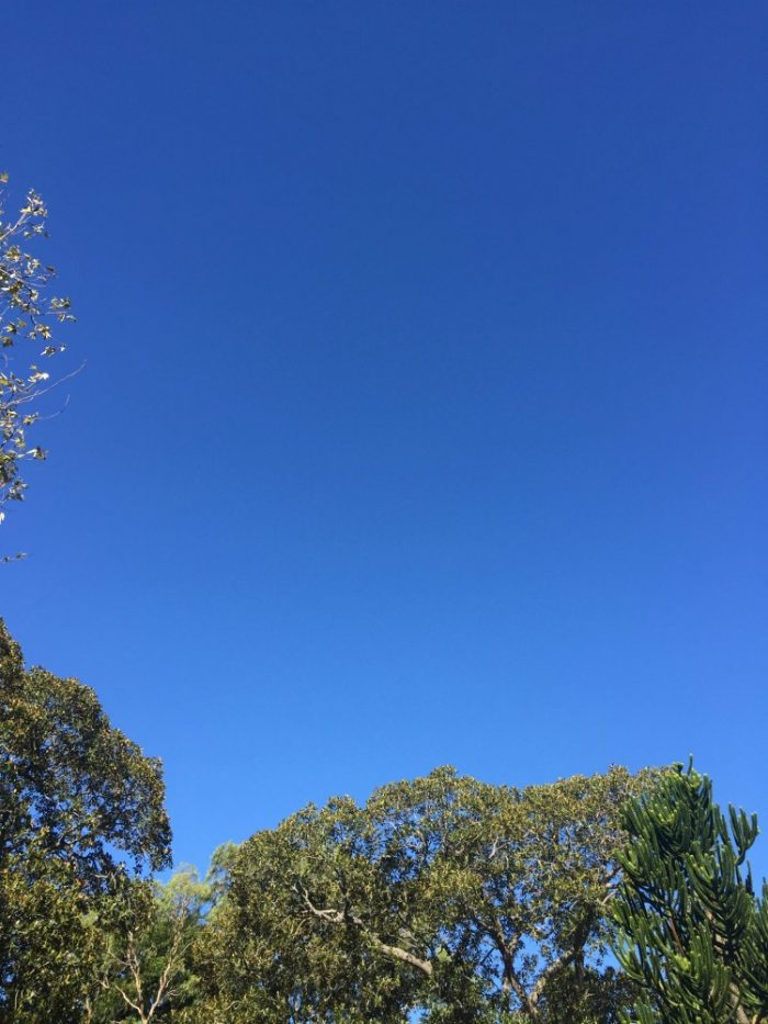 Taking stock - blue skies