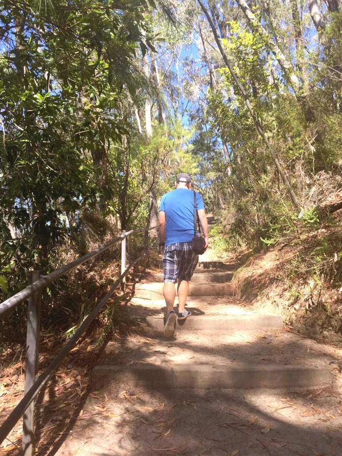 A weekend in Kangaroo Valley - Fitzroy Falls 3