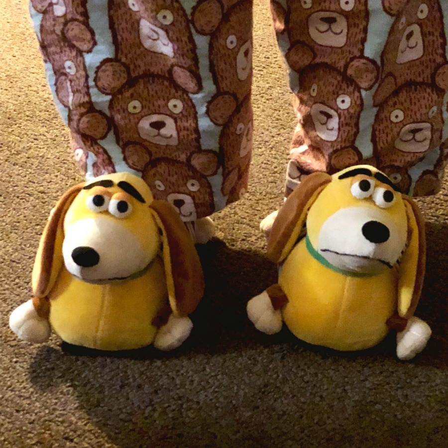 Taking stock - Slinky Dog Slippers