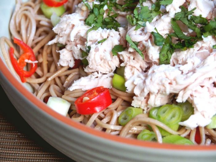 cold chicken noodle salad 2