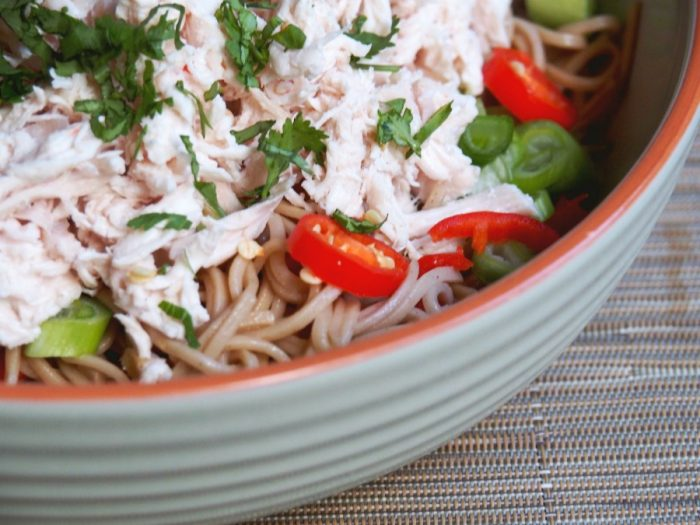 cold chicken noodle salad 3