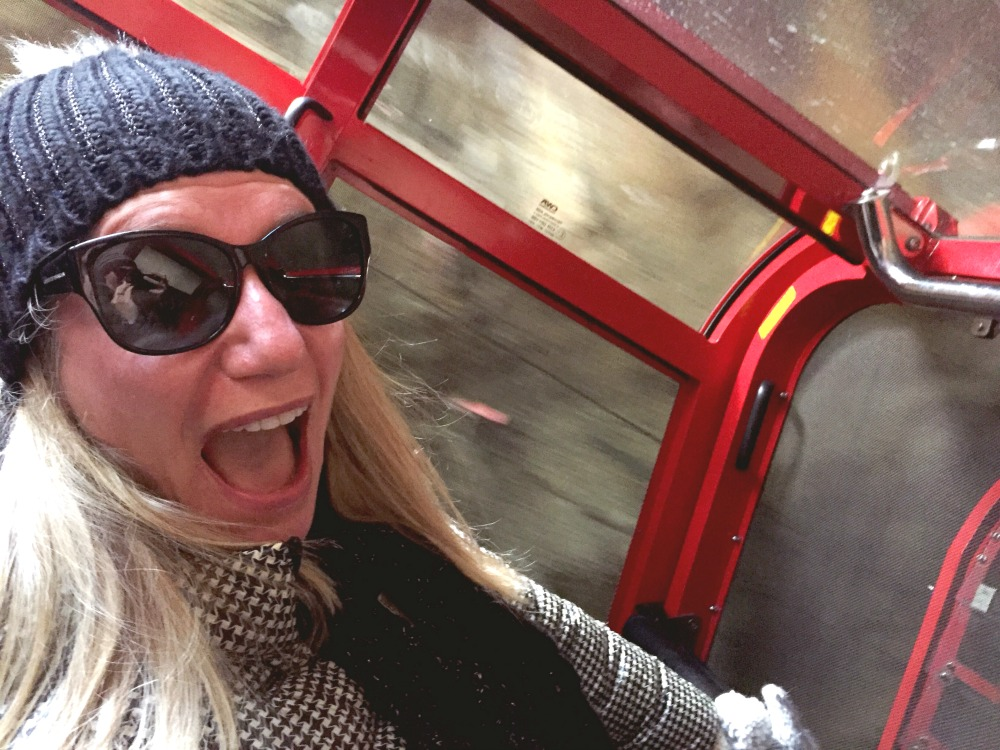 40 hours in the Blue Mountains - Scenic Railway 2