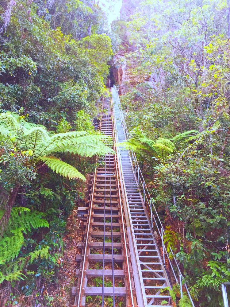 48 hours in the Blue Mountains - Scenic Railway 3