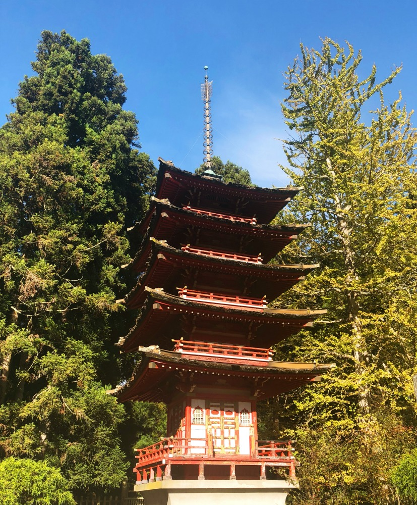 things to see and do in San Francisco - Japanese Tea Garden