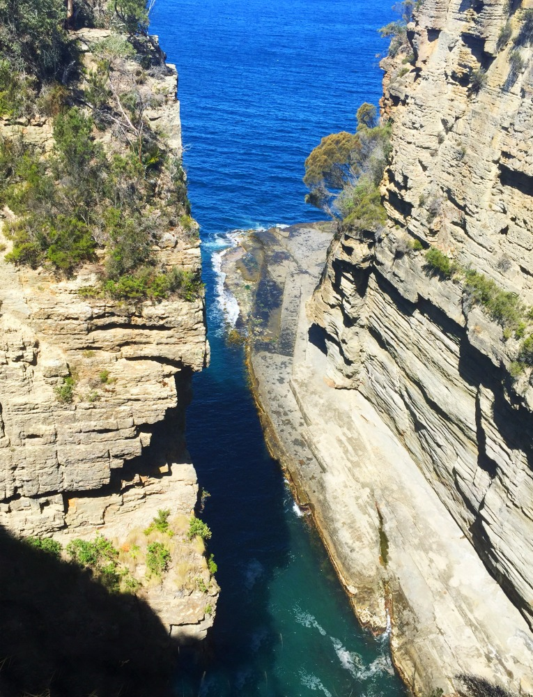 Let's Show You Tasmania Tours Devils Kitchen