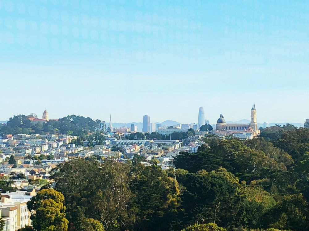 5 museums to visit in San Francisco -De Young observation tower