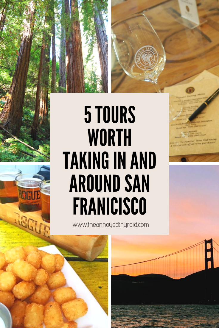 5-tours-worth-taking-in-and-around-san-francisco