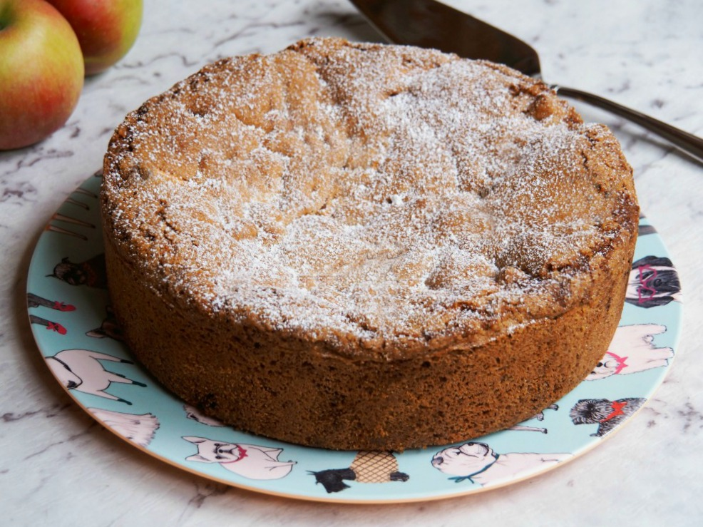 one-pot-spiced-apple-cake-5