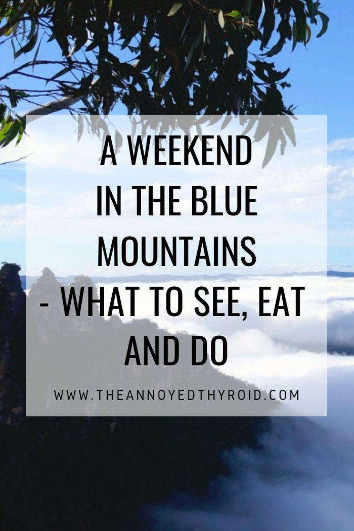 A-weekend-in-the-blue-mountains pin